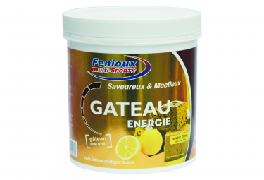 FENIOUX MULTI-SPORT ENERGY Cake Lemon 400gr