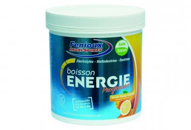 FENIOUX Multi-Sport Energie Drink Progressive 500g Flavour Blood Orange
