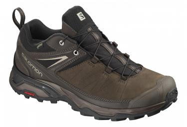 Salomon X-Ultra 3 LTR GTX Hiking Shoes Brown