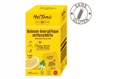 Bebida antioxidante Meltonic Drink Flavor