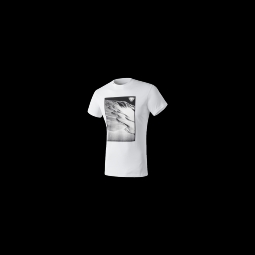 T shirt dynafit first track co m s s tee white tracks