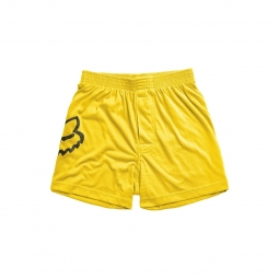Boxer fox jumped yellow s