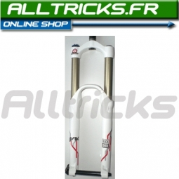 Rock Shox Fourche Lyrik 2010 170 mm coil Blanche/rouge maxle