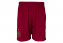 Pantalon Adidas Spanien Herren Fußball Shorts