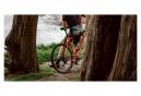 Teravail Rutland 29'' Neumático de grava Tubeless Ready, plegable, ligero y flexible, color tostado