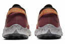 Chaussures de Trail Nike Pegasus Trail 2 Or / Rouge / Or