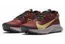 Chaussures de Cross Training Nike Pegasus Trail 2 Rouge / Or