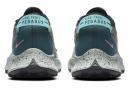 Chaussures de Trail Femme Nike Pegasus Trail 2 Bleu / Rose