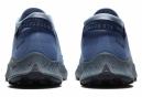 Chaussures de Trail Nike Pegasus Trail 2 GTX Bleu / Gris