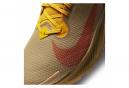 Chaussures de Trail Nike Pegasus Trail 2 GTX Beige / Orange