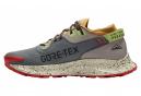 Nike Pegasus Trail 2 GTX Trail Shoes Gray Multi-color Men