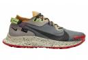 Chaussures de Trail Nike Pegasus Trail 2 GTX Gris / Multi-couleur
