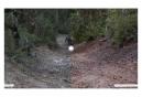 Lunettes Oakley Plazma Black Ink / Prizm Trail Torch / Ref.OO9019-0759