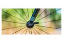Serrages de Roues Enve Titane 9x100 - 9x135 mm