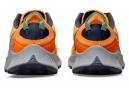 Chaussures de Trail Nike Pegasus Trail 3 Orange / Bleu