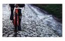 Vélo de Route Trek Domane SLR 6 Shimano Ultegra 11V 2017 Noir