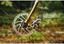 Gravel Bike Bombtrack Arise Single Speed 2017 Or