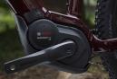 VTT Semi-Rigide Femme Electrique Trek PowerFly 5 WSD 29'' Shimano Deore 10V Bordeaux 2019